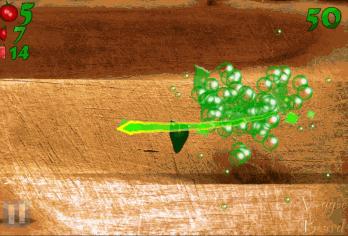 Veggie Ninja - android_phone3